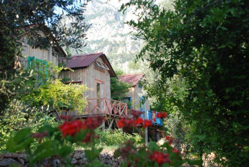 Sultan Camp