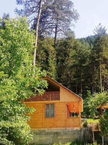 Guest House Ilia