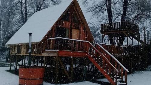Lodge nidos melipeuco