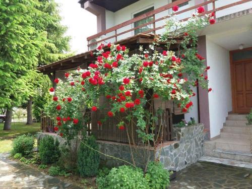 Riverside Villa Matka
