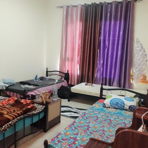 Executive Girl's hostel near metro station