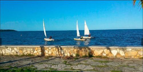 Hostal La Marina