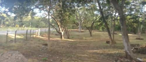 Camping Organic Spirit Project