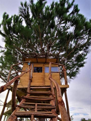 Ionian Treehouse Ecohosting Cuckoo's nest