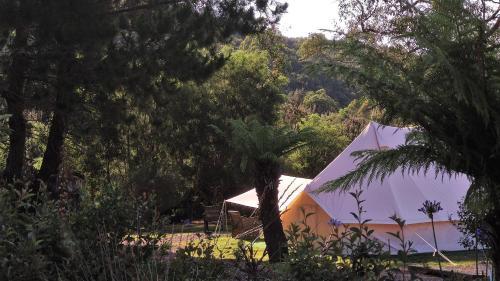 Glamping at Zeehan Bush Camp