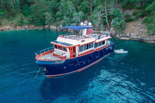 Ada Dreams / Boat