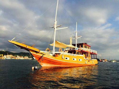 Clavalia Cruises