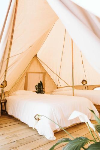Dreamsea Mediterranean Camp