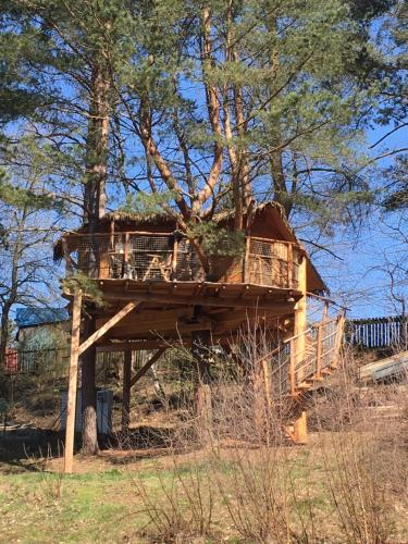 Treehouse Stvořidla