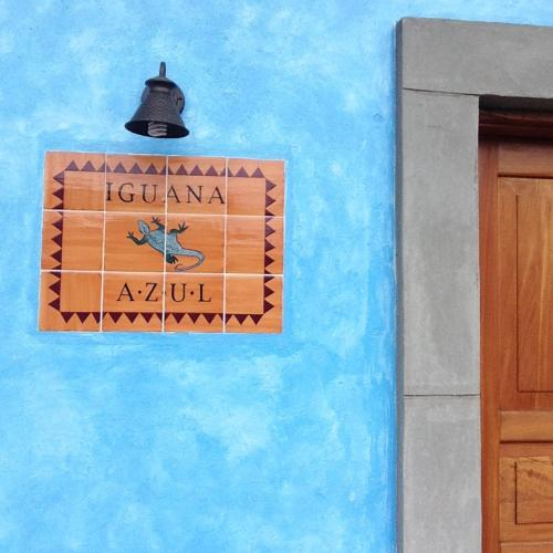 Iguana Azul