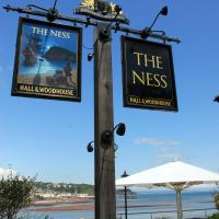 The Ness