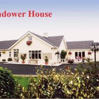 Glendower House, hotel in New Ross