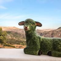 La Oveja Verde de la Alpujarra