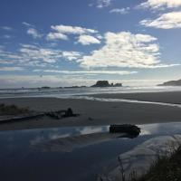 Out the Bay | Tahi (1)