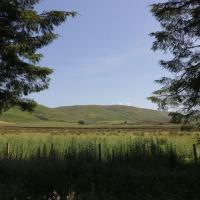 Glenwharrie Cottage