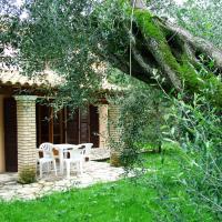 Villa Olive apartments