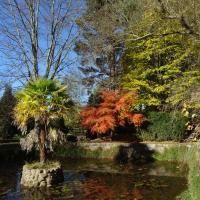 Jardin de Carrejo