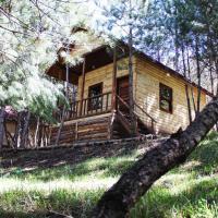 Çam Pınarı Doğa Evleri, hotel in Mengen