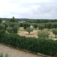 Agriturismo Green Park