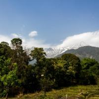 Peaceful View Home in Dharamshala