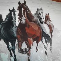 Toma street horses