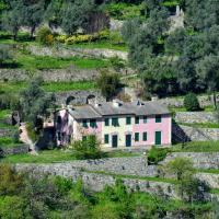 Villa Olivari - apt il Cedro