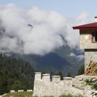 Serinyer Dağ Evi, hotel in Ayder Yaylasi