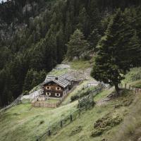 Hirschhof Pfrein - Hideaway