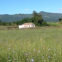 Quinta de São Brás