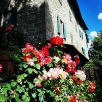 Podere I Rovai-apt IL RIFUGIO- in the heart of Tuscany