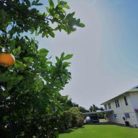 Hilo Bed and Breakfast