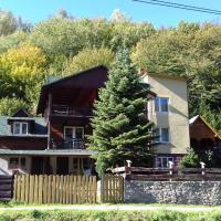 Willa Rytro dom w górach