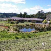 Totara Valley Bed & Breakfast