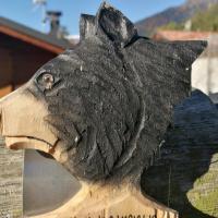 The Bear's house