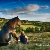 Ferienwohung für 2 bis 8 Personen auf dem Pferdehof