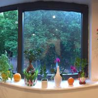 Beautiful studio flat in central London