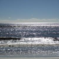 Sunset Harbor Condo 1-309