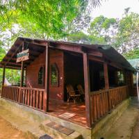 Treehouse 1BR Stay in Wayanad