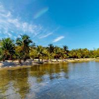 Tropical Villa @ Coral View