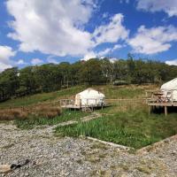 Syke Farm Campsite - Yurt's