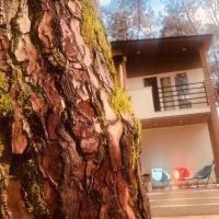 VIP Sweet Home in Shekvetili