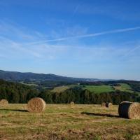 Stanování na farmě
