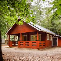 Cozy, wooden lodge with a veranda, located in the Veluwe