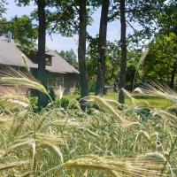 Farm Hostel