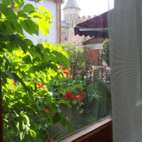 Old house apartment with Garden area