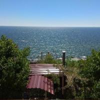 Дача у моря, Совиньон