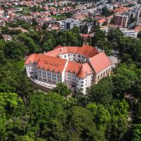 Palace Art Hotel Pezinok
