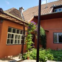 Casa Dalia Transilvania
