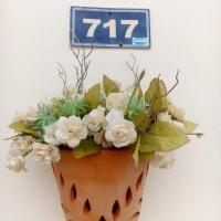 Casa 717