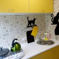 1 комн квартира Кошка ждет Вас Жуляны Добробут